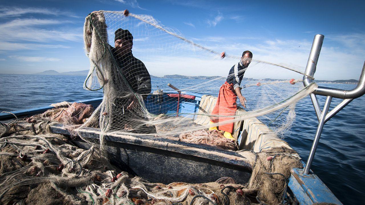 Indennità Covid 19 Pescatori Autonomi a Rimini: Patronato e CAF UNSIC | Form di Contatto dedicato ed Orari e Numeri per Assistenza UNSIC